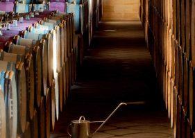 investirdanslevin.info, toutes les raisons d'investir dans le vin