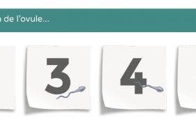 Date ovulation : comment la connaître pour connaître sa période d'ovulation